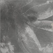 Плитка Kasbah Mix Grey 13х13