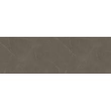 Stone Brown WT15STE21 Плитка настенная 250*750