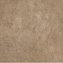 Absolute Stone Напольная 17812 Noce nat. 60x60