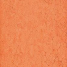 Maiolica Arancio 20x20