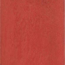 Maiolica Rosso 20x20