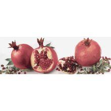 Decor Tutti Frutti Melagrana 10x30